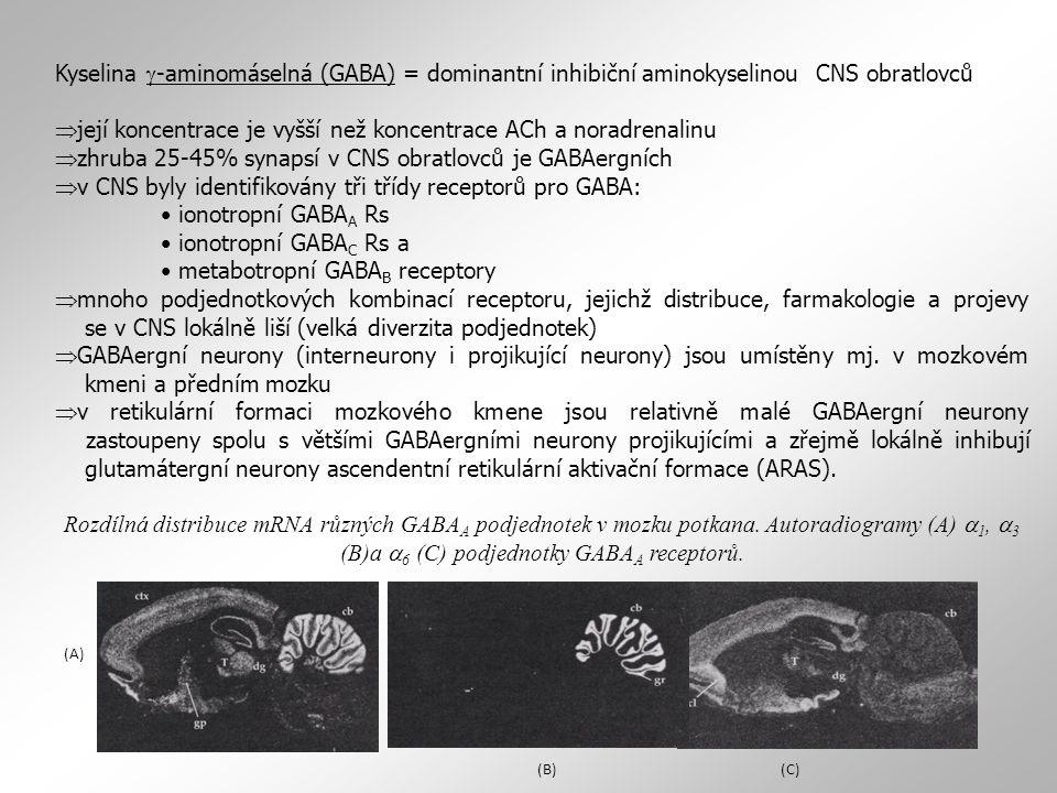 její koncentrace je vyšší než koncentrace ACh a noradrenalinu