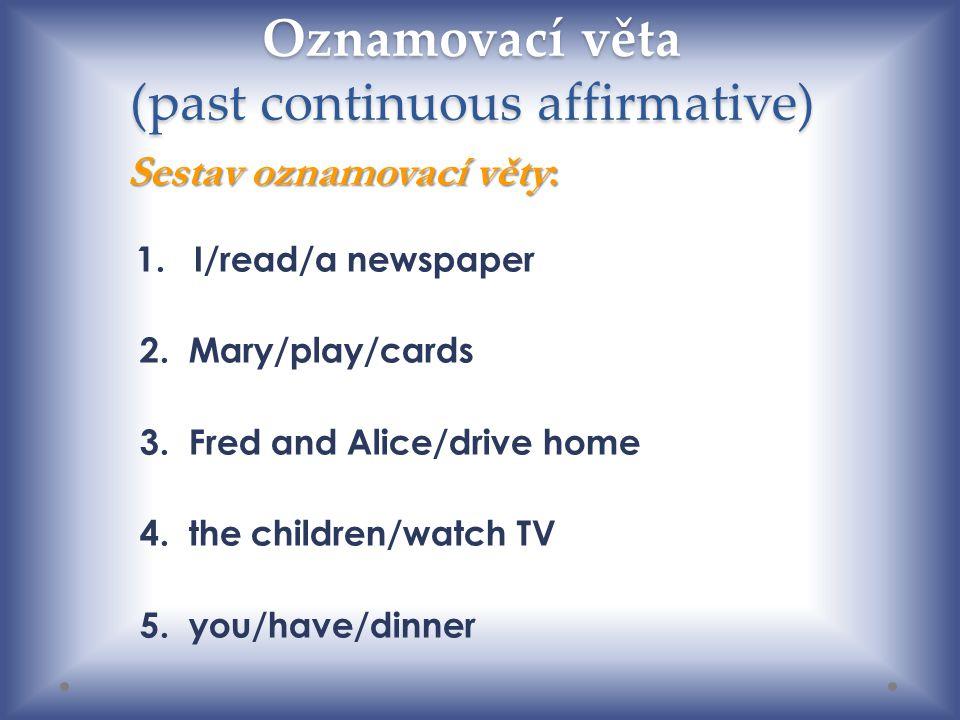 Oznamovací věta (past continuous affirmative)