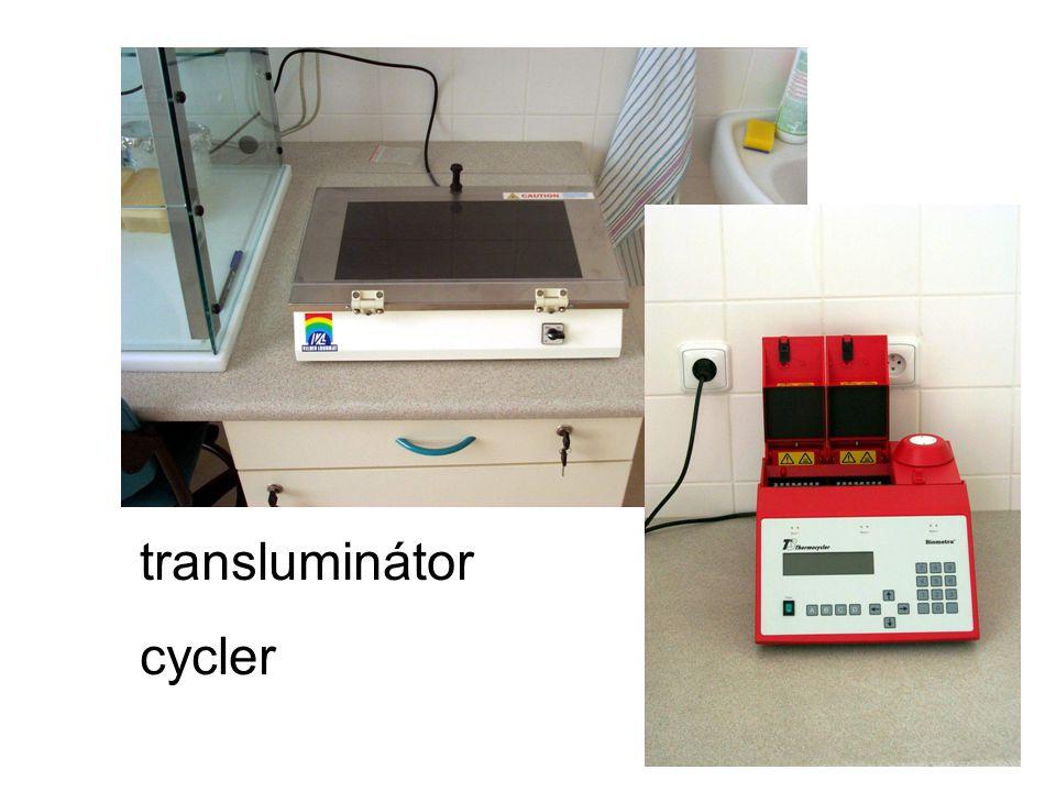 transluminátor cycler