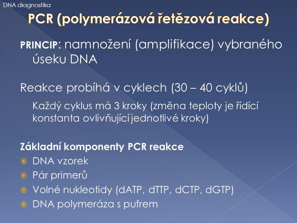 PCR (polymerázová řetězová reakce)