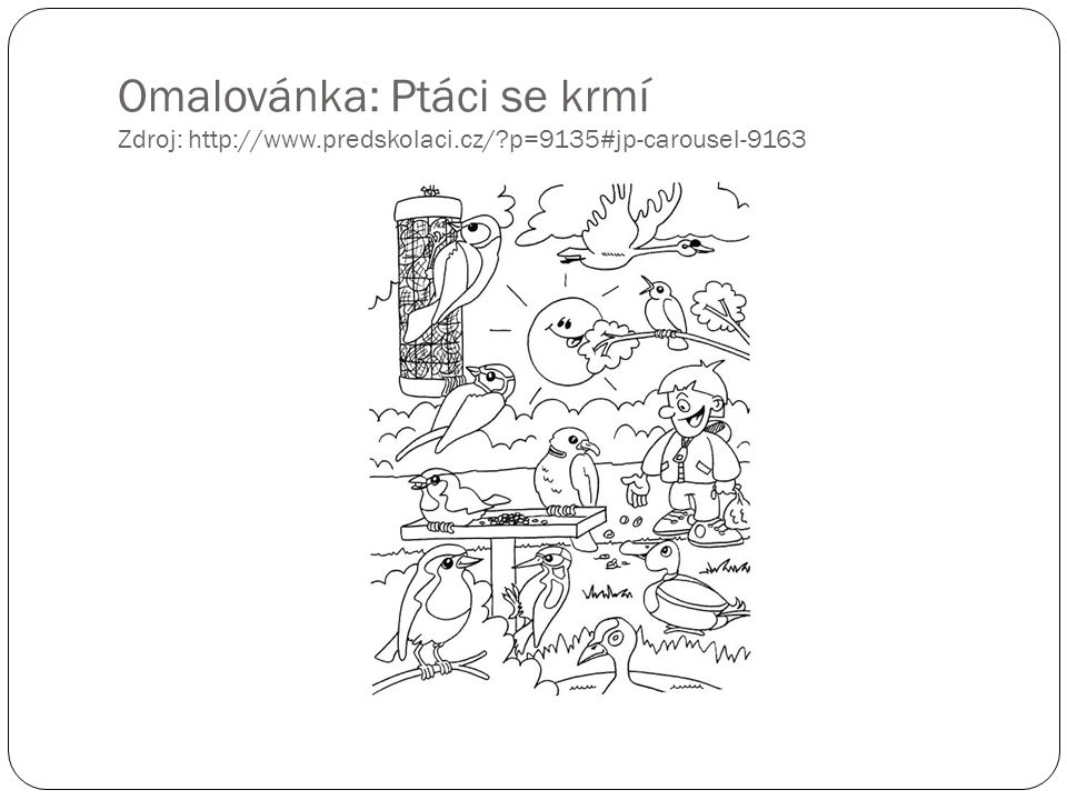 Omalovánka: Ptáci se krmí Zdroj: http://www. predskolaci. cz/