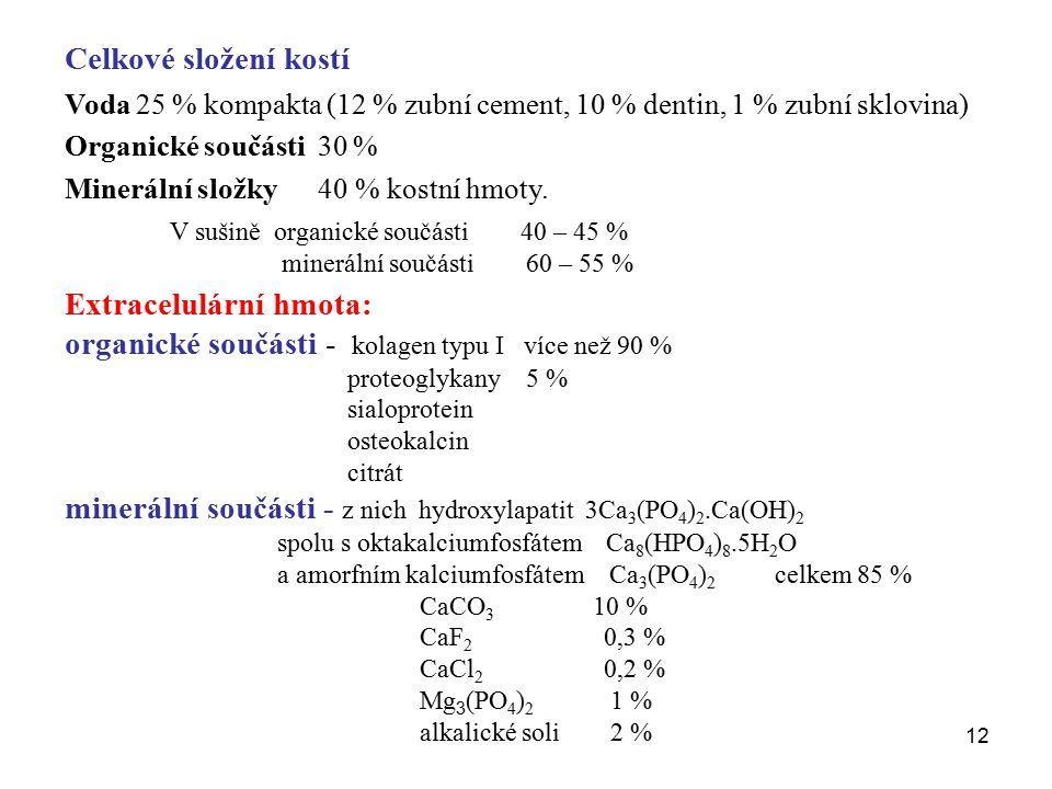 Extracelulární hmota: