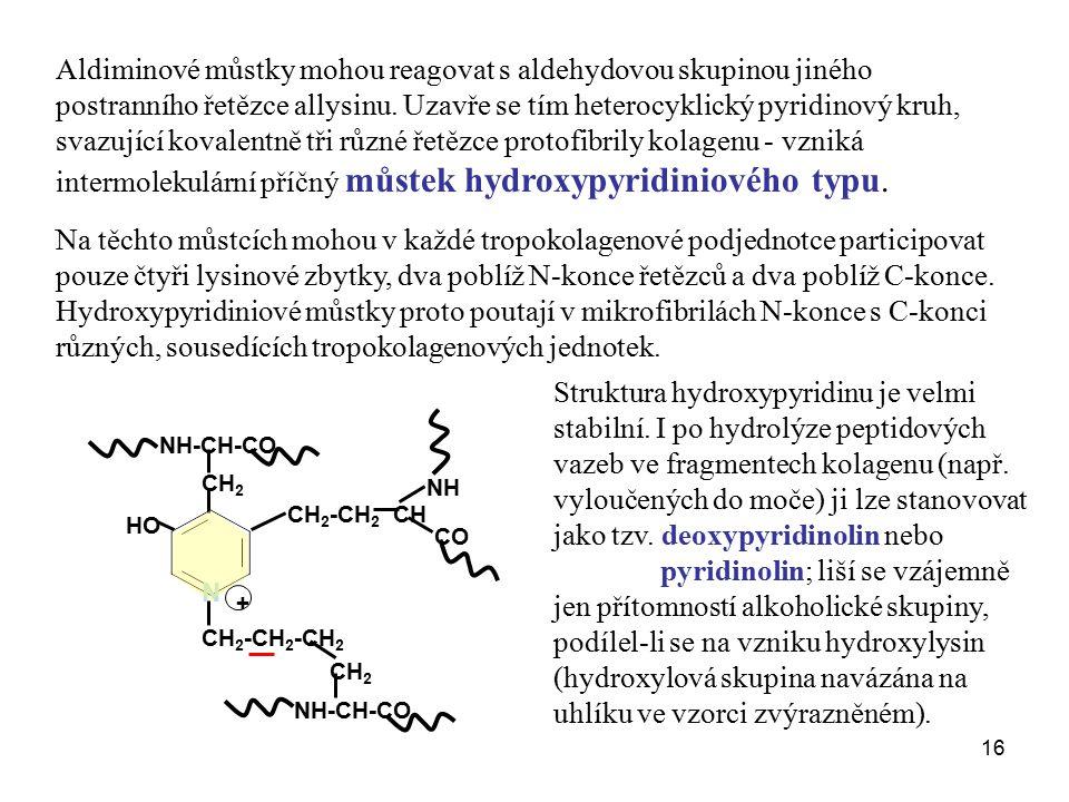 intermolekulární příčný můstek hydroxypyridiniového typu.