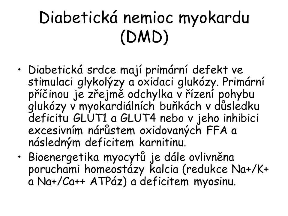 Diabetická nemioc myokardu (DMD)