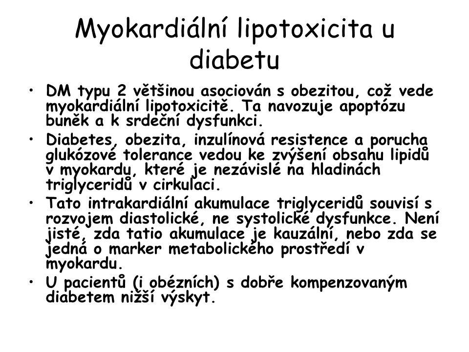 Myokardiální lipotoxicita u diabetu