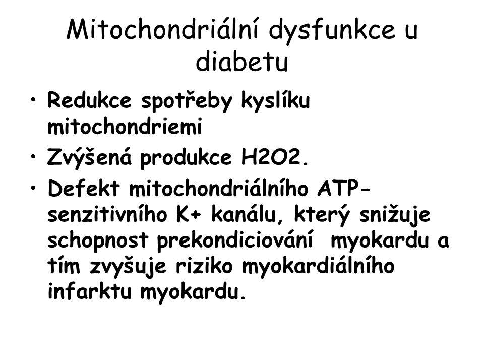 Mitochondriální dysfunkce u diabetu