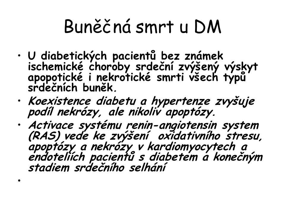 Buněčná smrt u DM