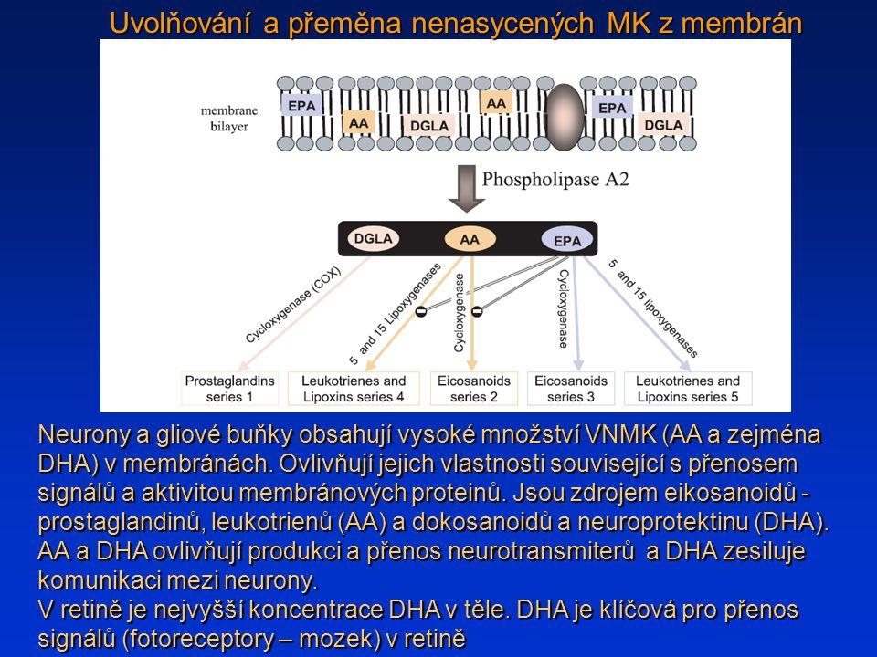 Uvolňování a přeměna nenasycených MK z membrán
