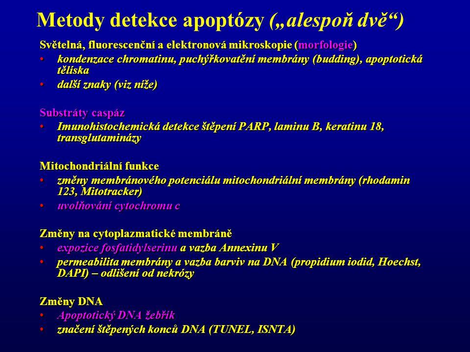 """Metody detekce apoptózy (""""alespoň dvě )"""