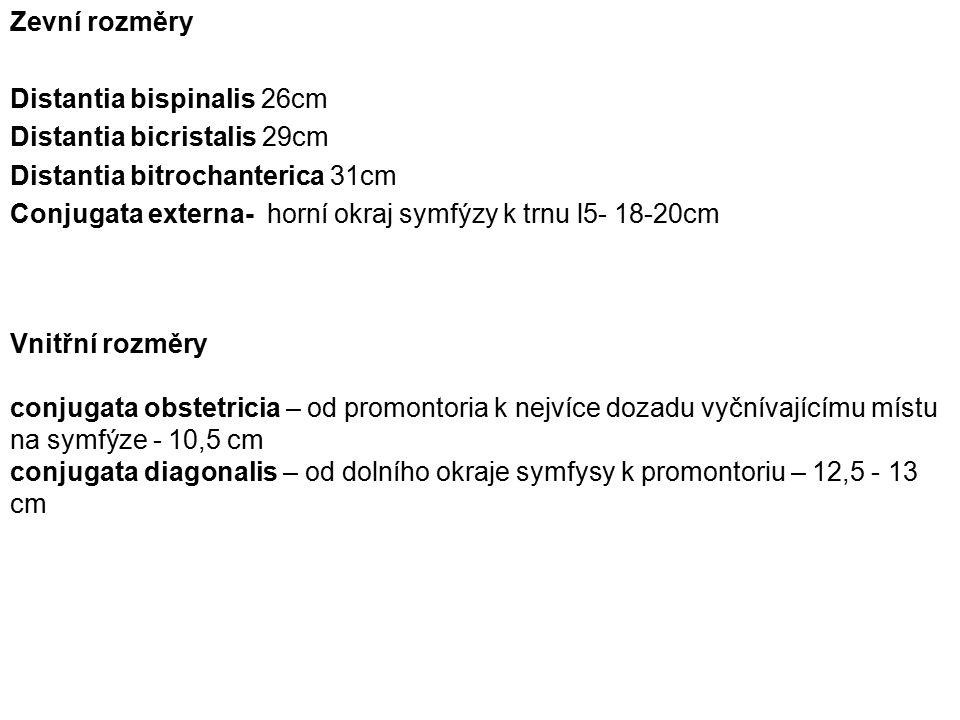 Zevní rozměry Distantia bispinalis 26cm. Distantia bicristalis 29cm. Distantia bitrochanterica 31cm.
