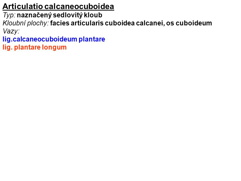 Articulatio calcaneocuboidea