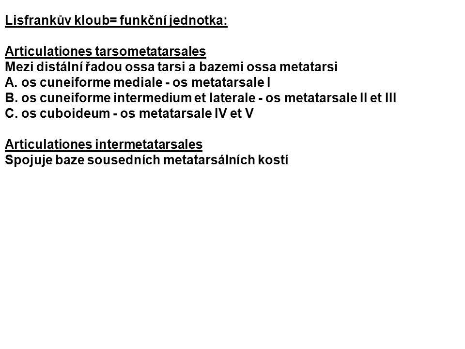 Lisfrankův kloub= funkční jednotka: