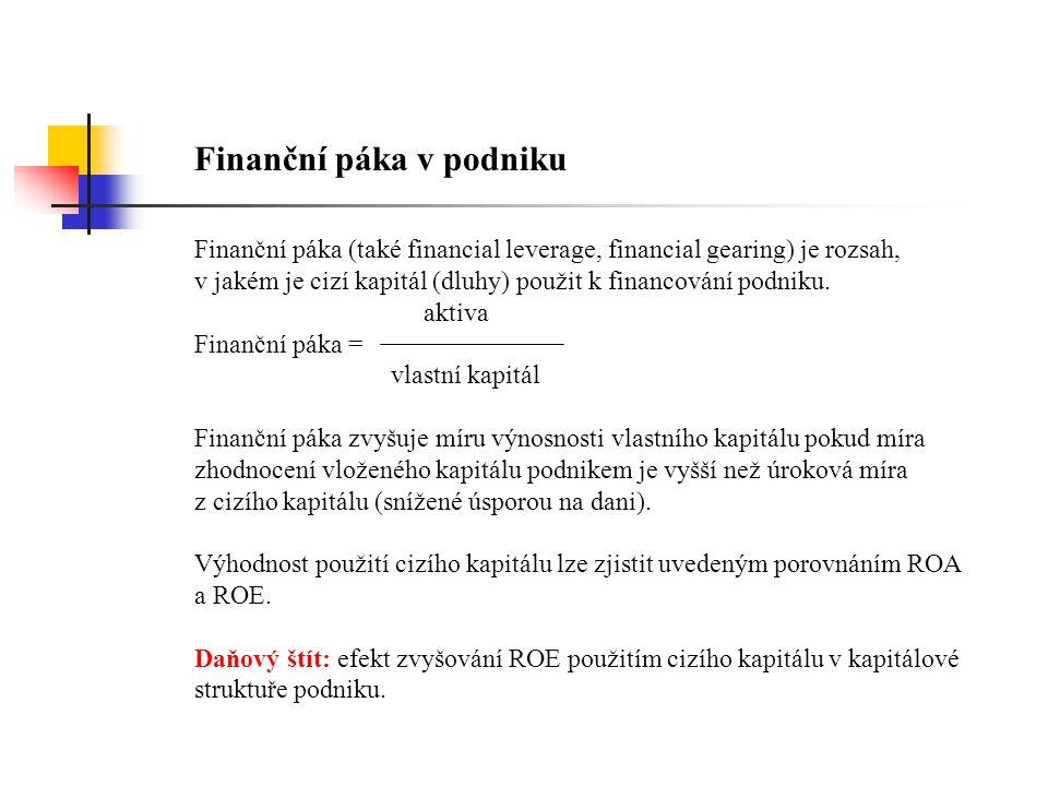 Finanční páka v podniku
