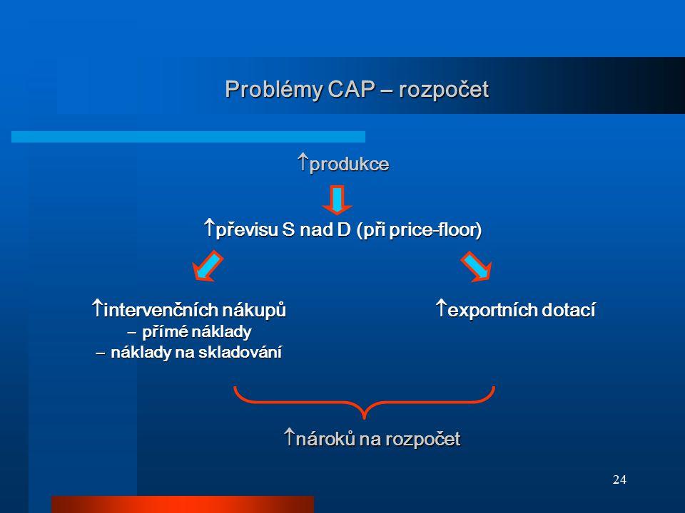 Problémy CAP – rozpočet