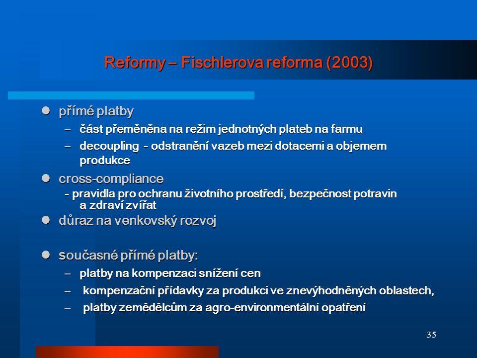 Reformy – Fischlerova reforma (2003)