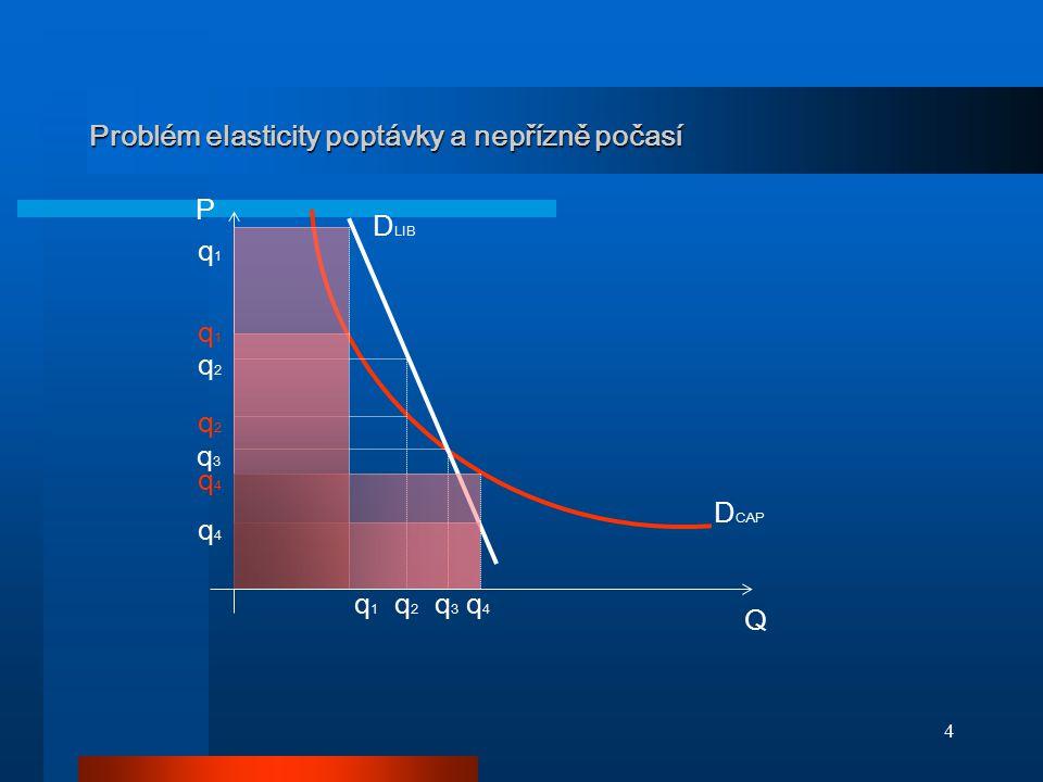 Problém elasticity poptávky a nepřízně počasí