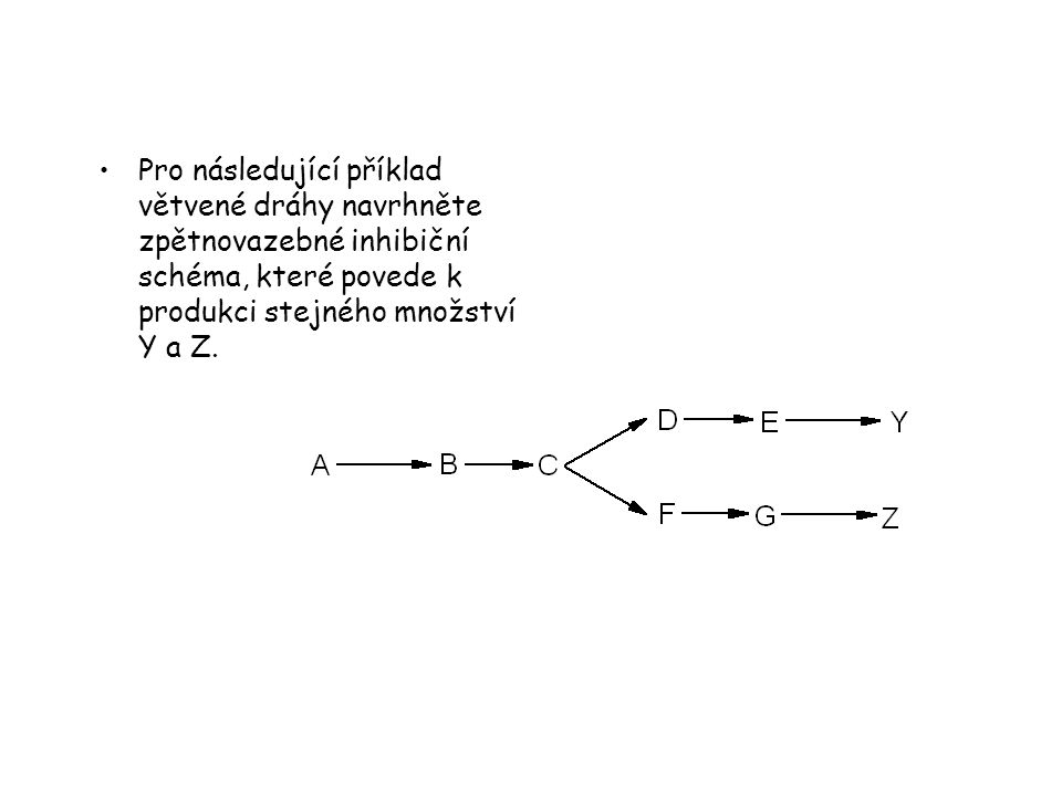 Pro následující příklad větvené dráhy navrhněte zpětnovazebné inhibiční schéma, které povede k produkci stejného množství Y a Z.