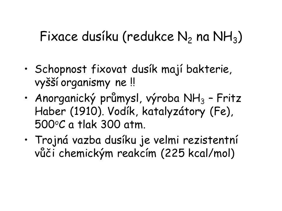 Fixace dusíku (redukce N2 na NH3)