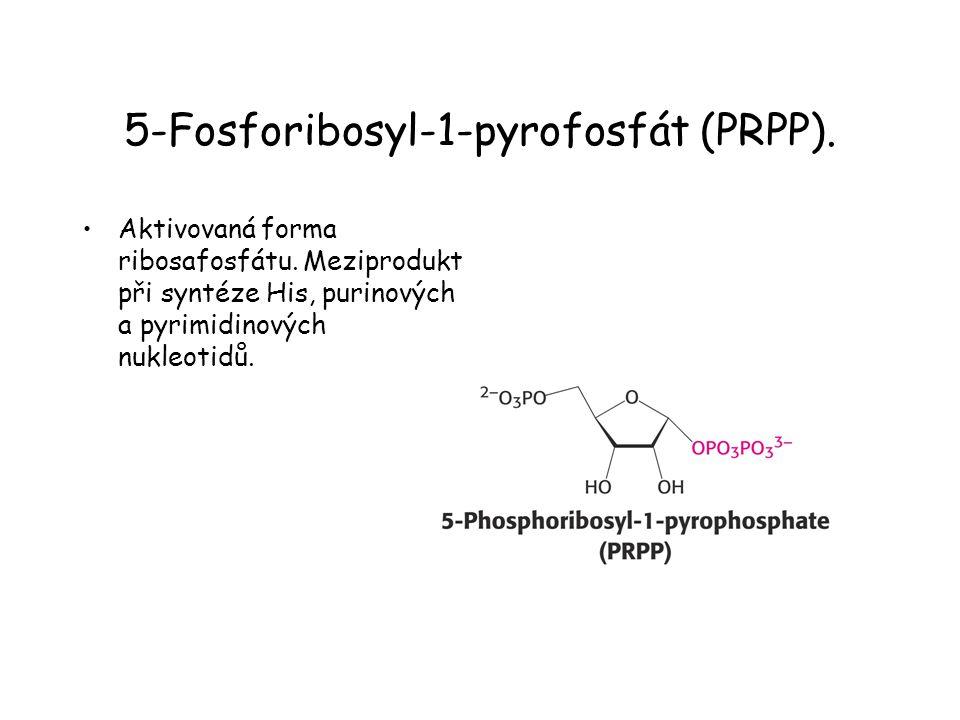 5-Fosforibosyl-1-pyrofosfát (PRPP).