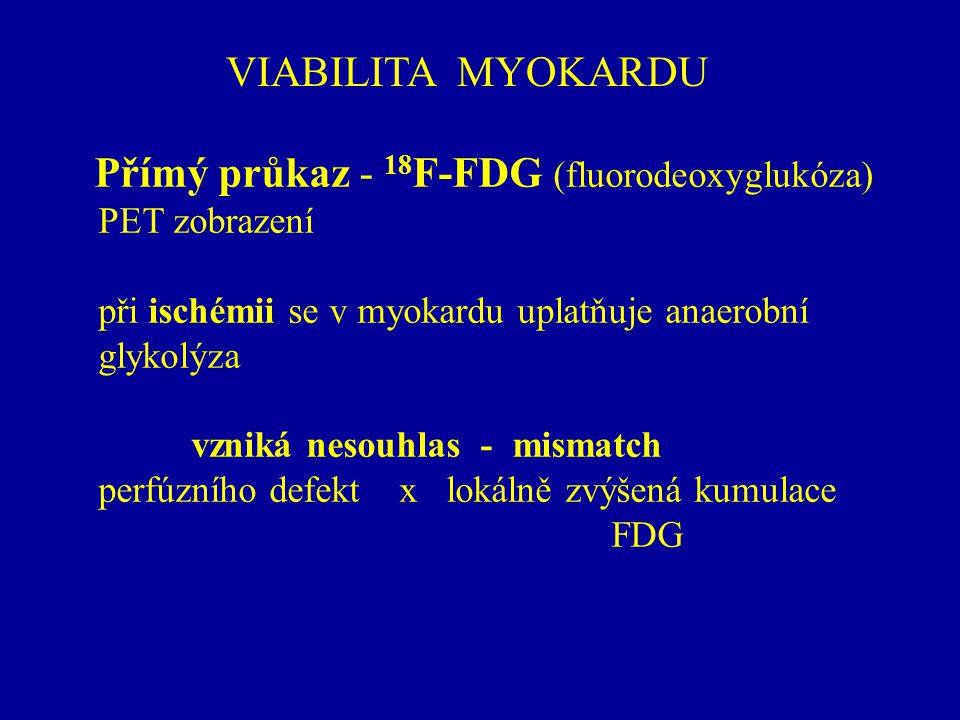 Přímý průkaz - 18F-FDG (fluorodeoxyglukóza)