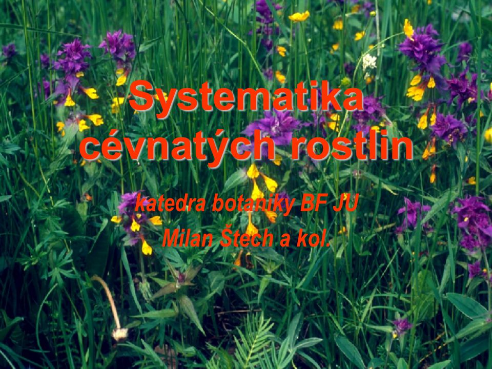 Systematika cévnatých rostlin