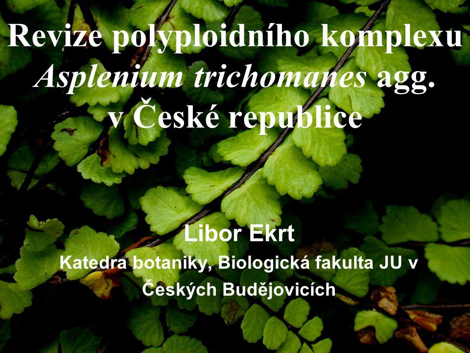 Katedra botaniky, Biologická fakulta JU v Českých Budějovicích