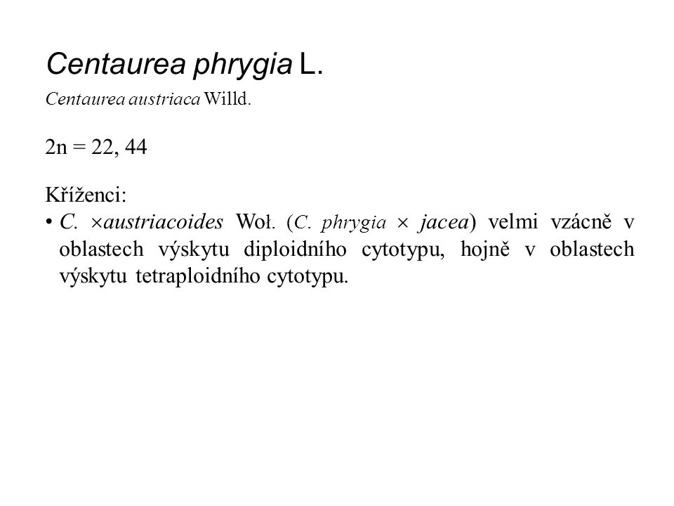 Centaurea phrygia L. 2n = 22, 44 Kříženci: