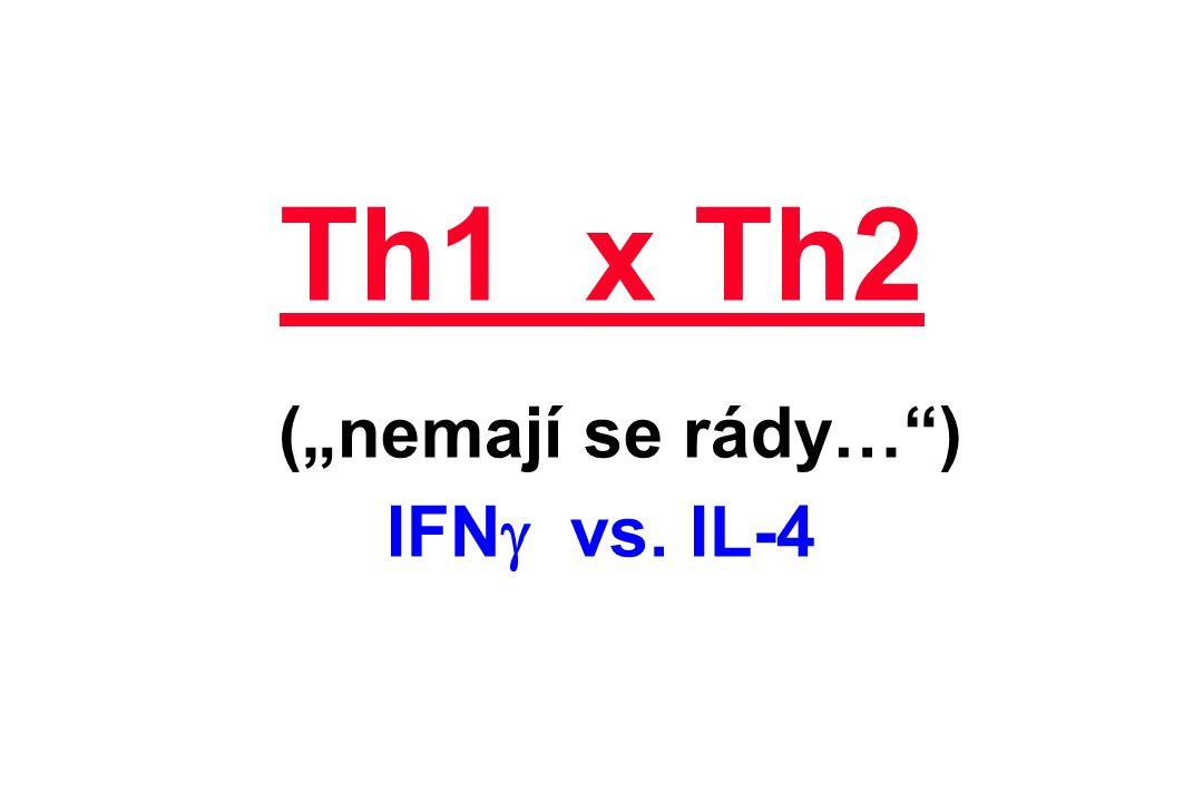 """Th1 x Th2 (""""nemají se rády… ) IFNg vs. IL-4"""