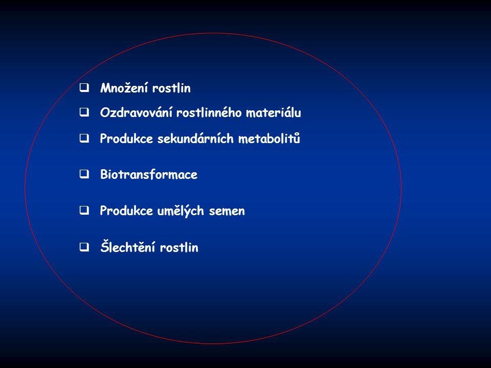 Množení rostlin Ozdravování rostlinného materiálu. Produkce sekundárních metabolitů. Biotransformace.
