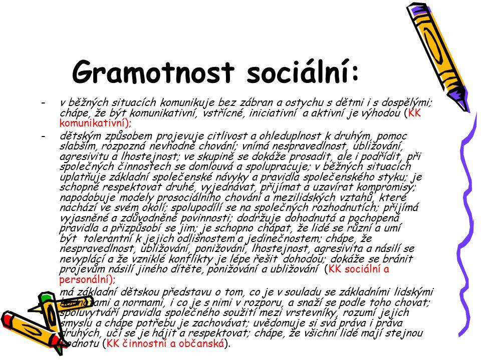 Gramotnost sociální: