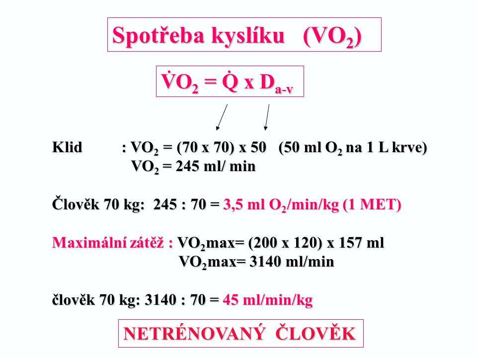 Spotřeba kyslíku (VO2) VO2 = Q x Da-v NETRÉNOVANÝ ČLOVĚK .