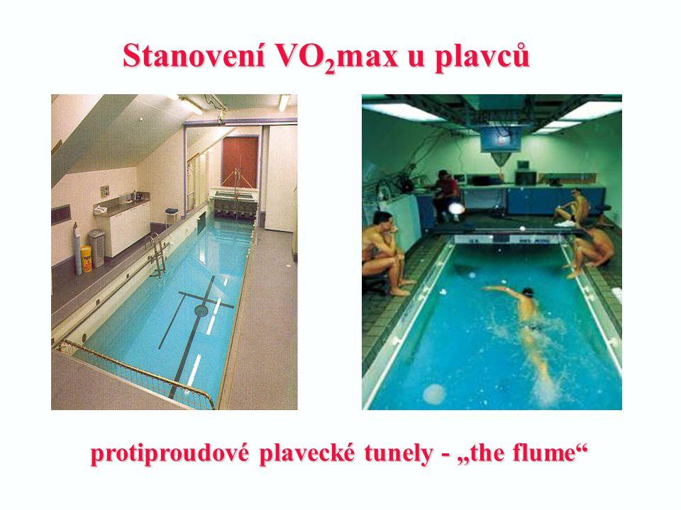 Stanovení VO2max u plavců