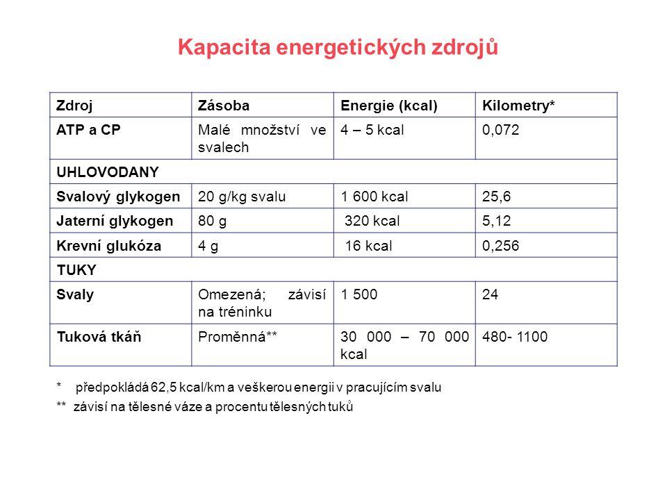 Kapacita energetických zdrojů