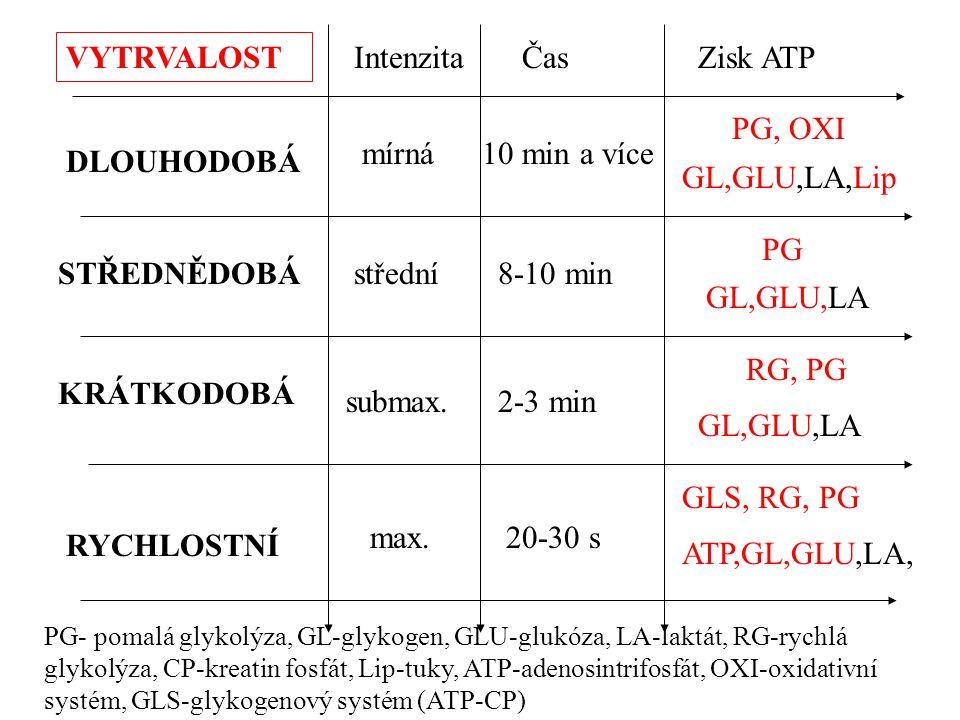 VYTRVALOST Intenzita Čas Zisk ATP PG, OXI mírná 10 min a více