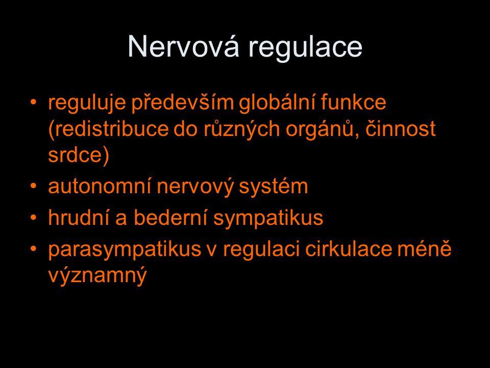 Nervová regulace reguluje především globální funkce (redistribuce do různých orgánů, činnost srdce)