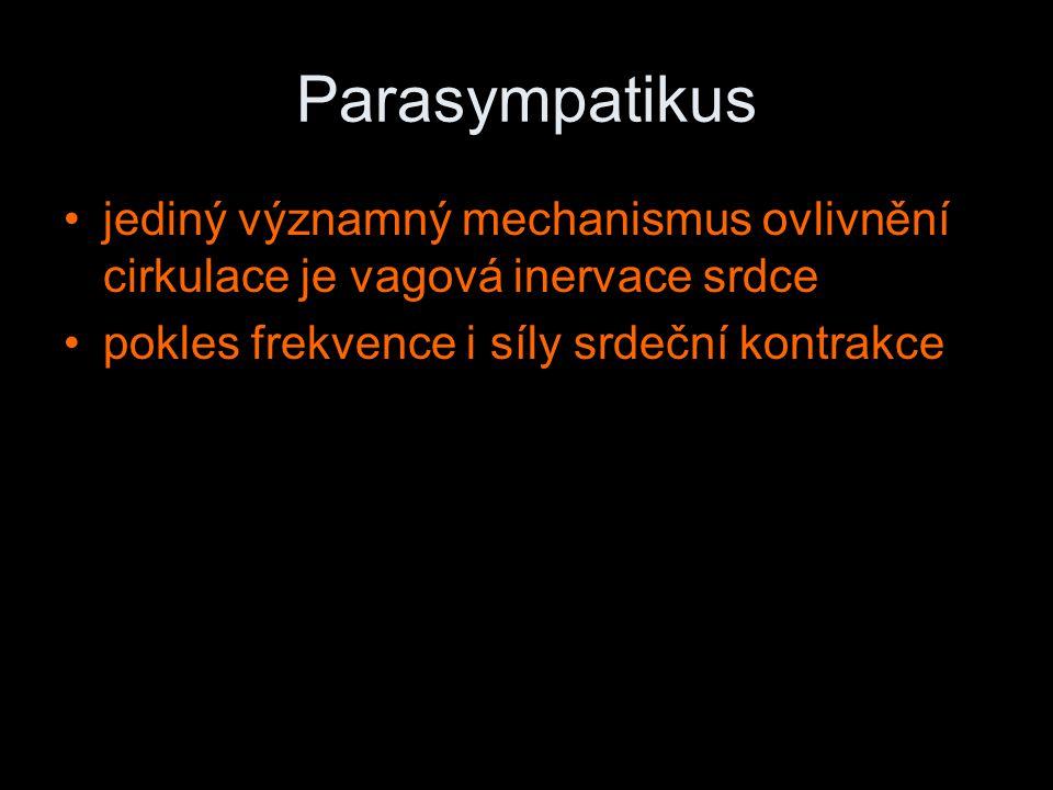 Parasympatikus jediný významný mechanismus ovlivnění cirkulace je vagová inervace srdce.