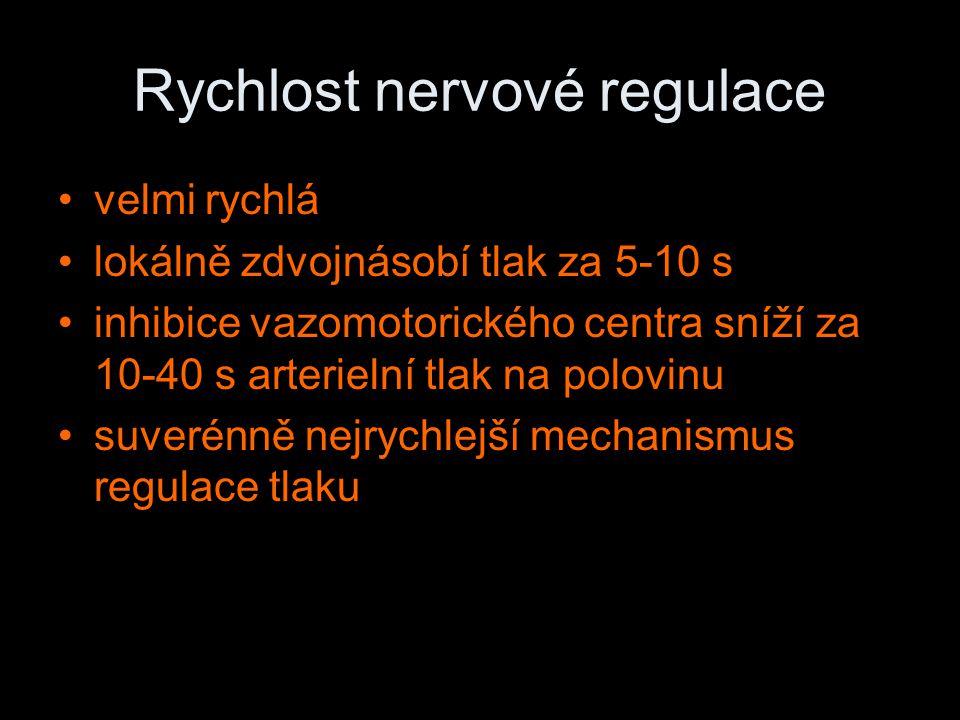 Rychlost nervové regulace