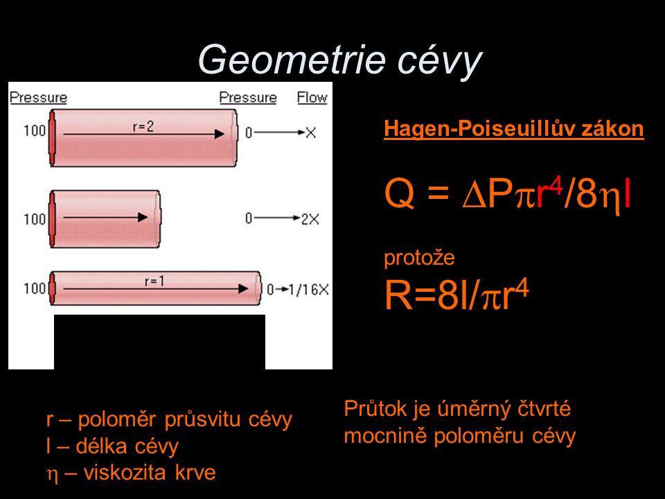 Geometrie cévy Q = DPpr4/8hl R=8l/pr4 Hagen-Poiseuillův zákon protože