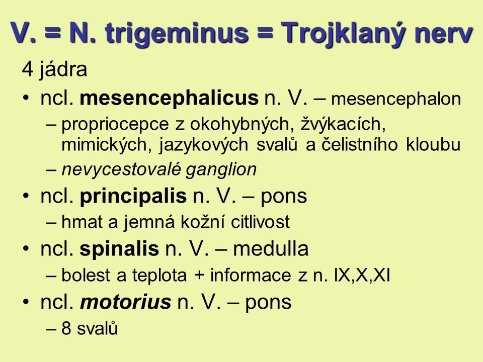 V. = N. trigeminus = Trojklaný nerv