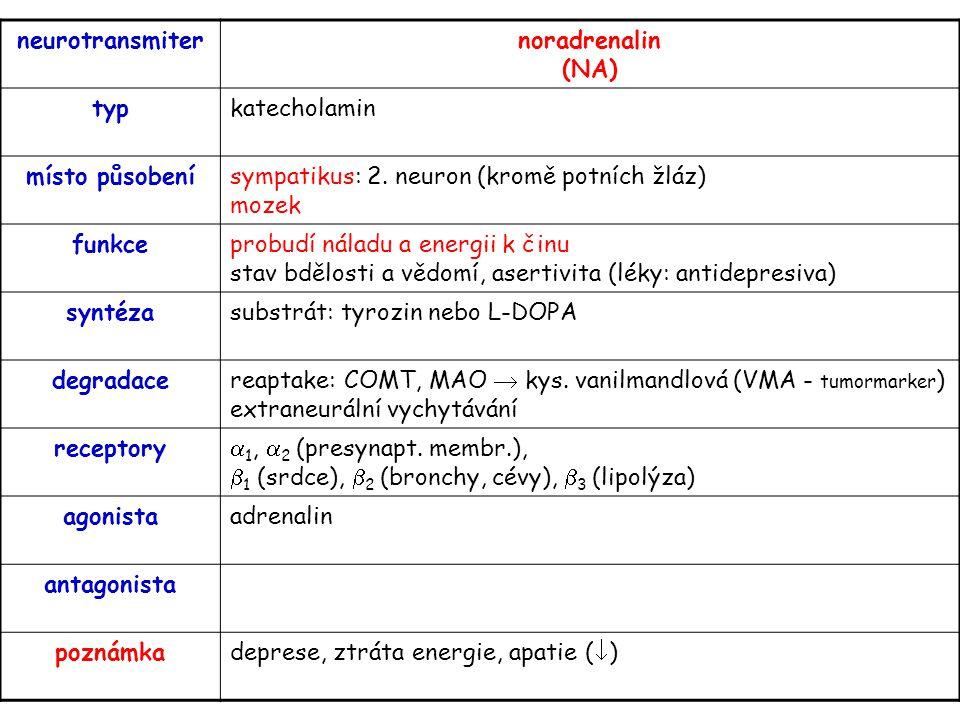 neurotransmiter noradrenalin (NA) typ. katecholamin. místo působení. sympatikus: 2. neuron (kromě potních žláz) mozek.