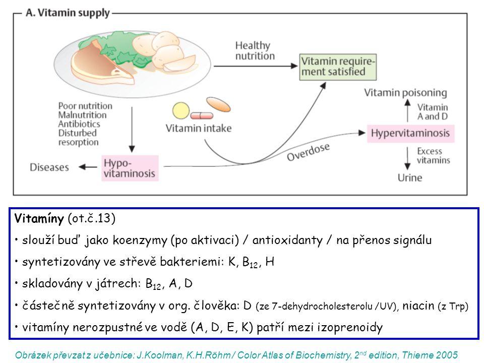 syntetizovány ve střevě bakteriemi: K, B12, H