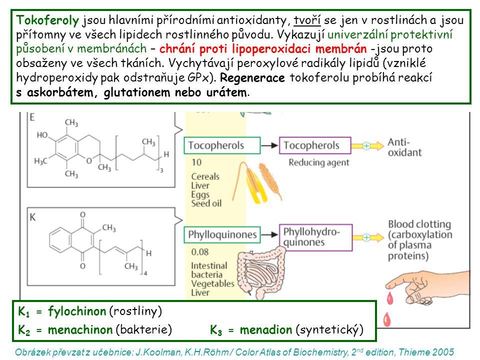 K1 = fylochinon (rostliny)