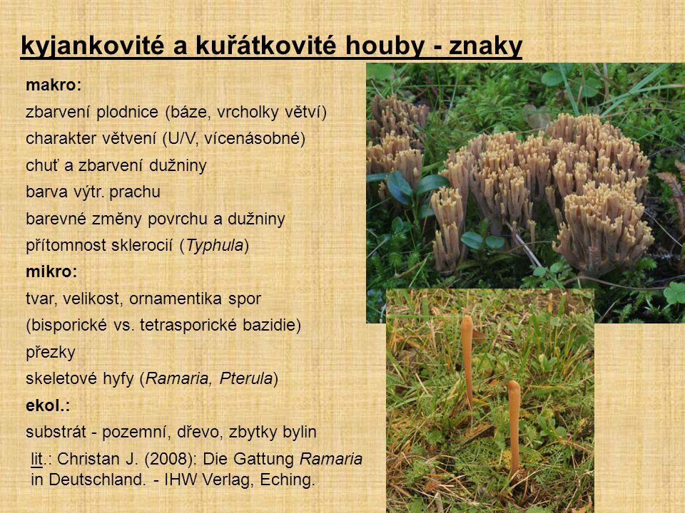 kyjankovité a kuřátkovité houby - znaky