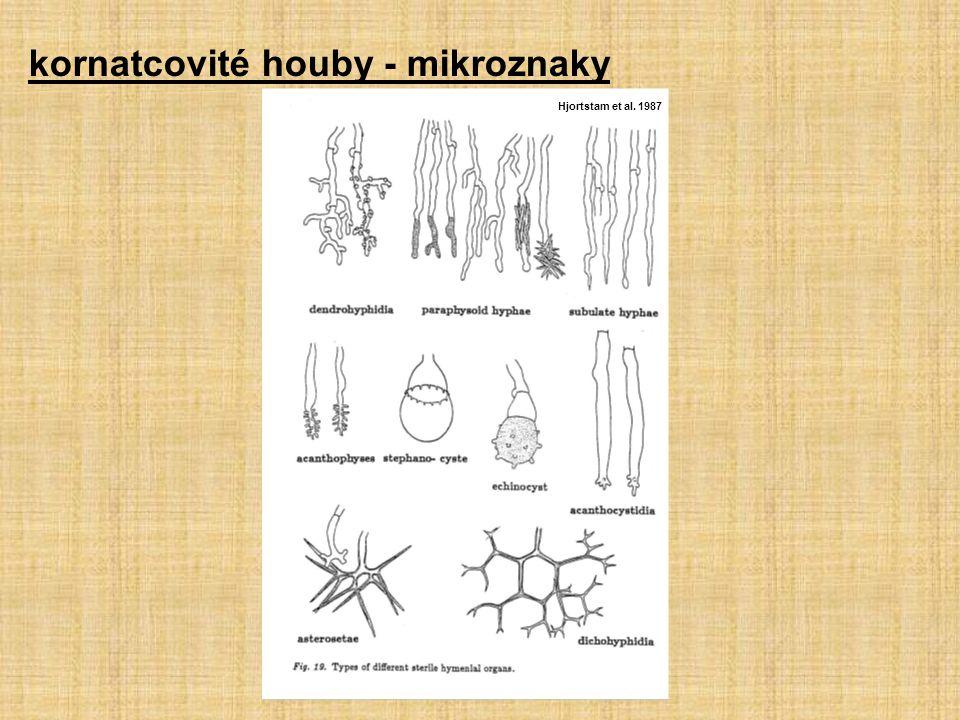 kornatcovité houby - mikroznaky