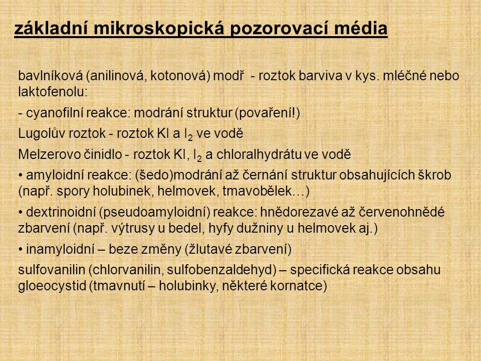 základní mikroskopická pozorovací média