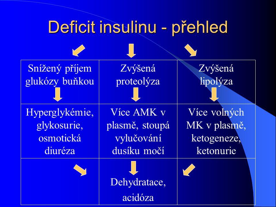 Deficit insulinu - přehled