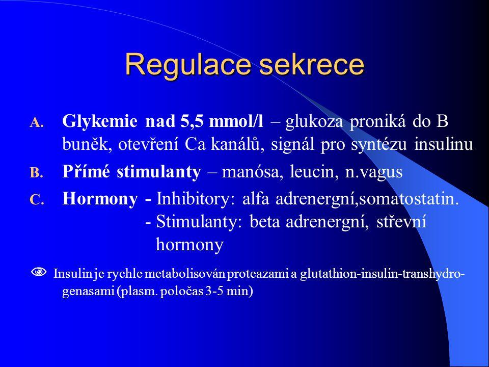 Regulace sekrece Glykemie nad 5,5 mmol/l – glukoza proniká do B buněk, otevření Ca kanálů, signál pro syntézu insulinu.