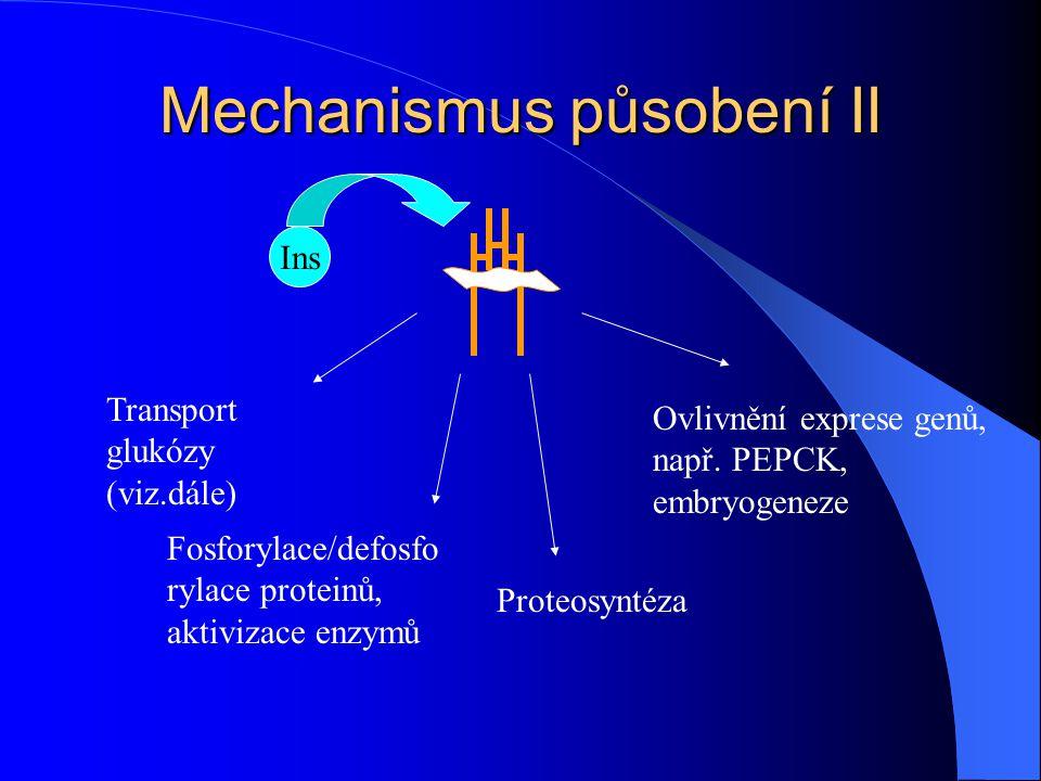 Mechanismus působení II