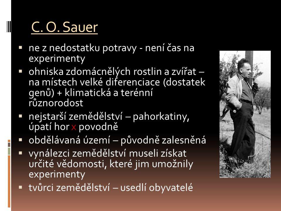 C. O. Sauer ne z nedostatku potravy - není čas na experimenty