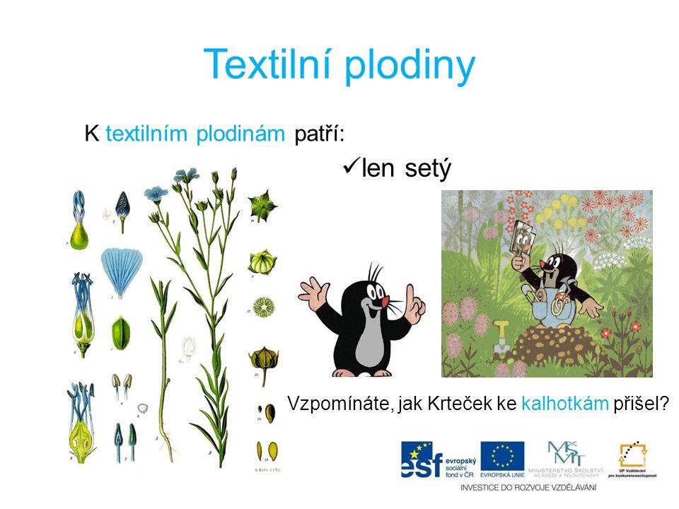Textilní plodiny len setý K textilním plodinám patří:
